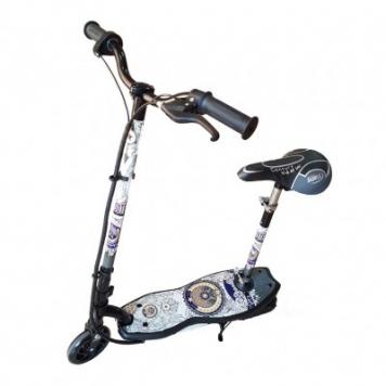 Электросамокат El-sport Scooter CD10A фото1