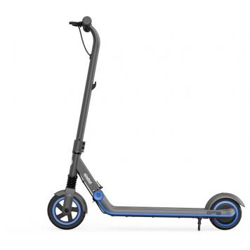 Электросамокат Ninebot KickScooter Zing E10 фото